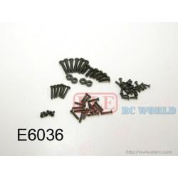 E6036 Screws pack