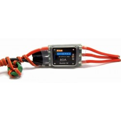 ELE EA-80 HV Support 3-10 cells Lipo