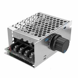 DC 12V/24V/36V/48V 20A Motor Control Board Brushed Motor Governor Drive Module