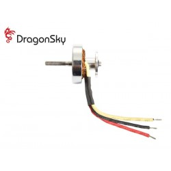 Dragonsky (MO-3800-01) 3800 KV Brushless Motor