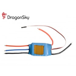 DragonSky 60A Brushless Motor Speed Controller ESC